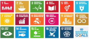 Africa and the Sustainable Development Goals (SDGs)
